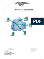 La Technologie Multicast.rapp03