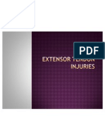 Extensor Tendon Injuries