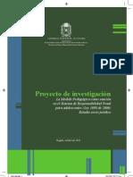proyecto de investigación la medida pedagógica