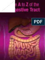 The A to Z Of The Digestive Tract