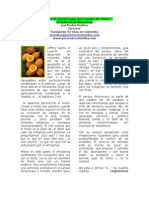 Amazonas Huito Desarrollo y Pepa