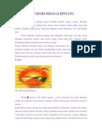 Matahari PDF
