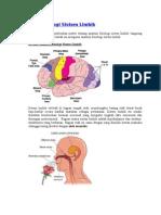 Anatomi Fisiologi Sistem Limbik
