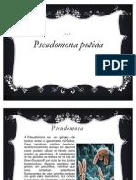 Pseudomona Putida - Degradadora de Derivados Del Petroleo