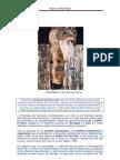 Artículo-Psicología del desarrollo del S