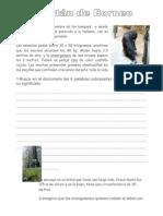 Orangután de Borneo 3º