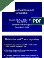 Reptile Anesthesia and Analgesia