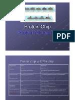 (050407)Protein Chip