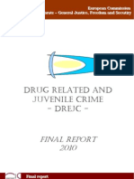 Final Report. DREJC Project Drug Related and Juvenile Crime
