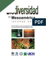 005-informe2002