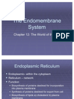 The En Do Membrane System Chapter 12