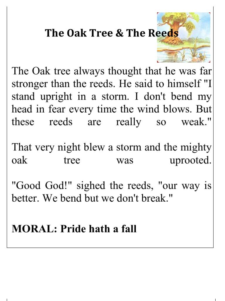 pride hath a fall story
