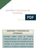 Anatomía y fisiología de estómago UBER