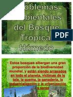 Problemas Ambient Ales de 3 Ecosistemas