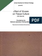 CPE Virus2