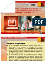 perfiles-de-proyectos-1206572295207756-4