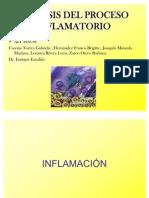 ÚLTIMA DE INFLAMACION 2[2]