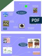 Composición de los suelos