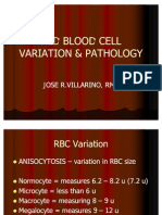 Red Blood Cell Variation
