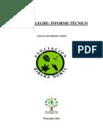 Informe Tecnico Bosque Alegre