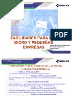 Facilidades Para Las Mypes-2010-Issp