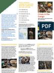 Crisis in the Congo Brochure