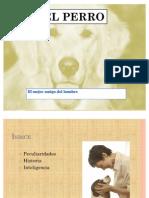 El_perro