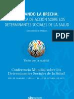 Discussion-Paper-DSS español