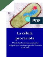 U. DIDACTICA CELULA PROCARIOTA CAP 2004