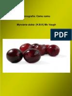 Monografia de Camu Camu
