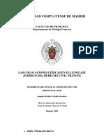 LAS COLOCACIONES LÉXICAS EN EL LENGUAJE