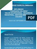 diplomado_hseq-2011
