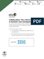 collaboration dynamic case  management