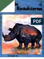 Cdk 076 Kulit (II)