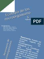 _Ecología