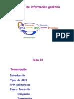 Tema 15. Transcripcion