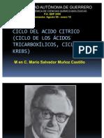 Ciclo de Krebs (Cac) 2009