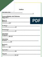 Histologia Del Sistema Digestivo Sintetizado Scribd