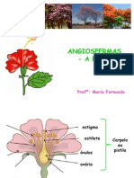 aula Unimax flores