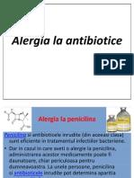 Alergie antibiotice