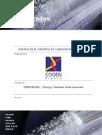 Análisis de la industria de la cogeneración en España