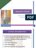 Anatomia de Abdomen