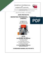 Marketing Profesional Inserción Laboral