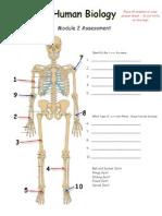 module 2 assessment