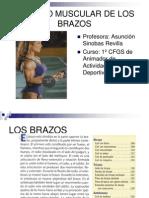 laminasbrazos-110120142639-phpapp02