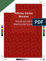 TERCER SECTOR e INNOVACIÓN SOCIAL (1ª edición)