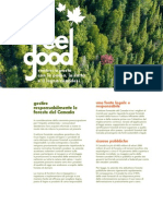 Sustainable Forest Managment IT Web