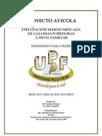 36556700 Proyecto Gallinas Ponedoras Documento Final[1]