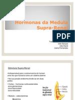 Medula Supra Renal
