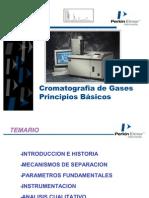 Cromatografia Gases Point[1]